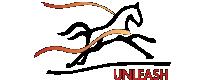 Unleash - PNG